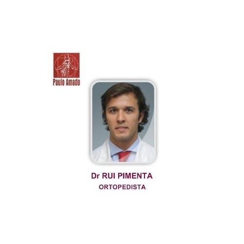 Dr Rui Pimenta